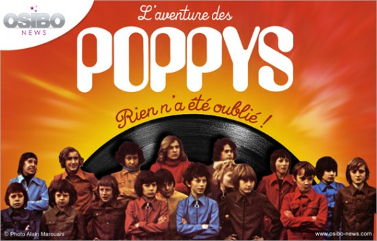 poppys-01-p