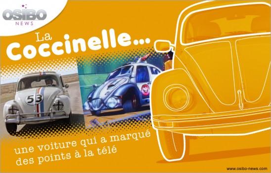 coccinelle-01-g