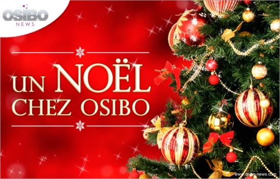 noel-osibo-01-g