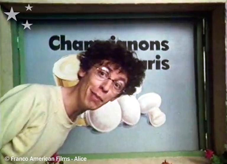 03-08-champignons