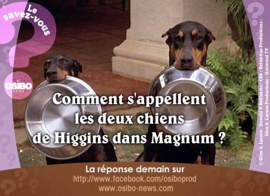 10-11 magnum